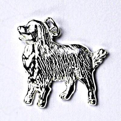 Stříbrný přívěšek, bernský salašnický pes, přívěsek ze stříbra P 200